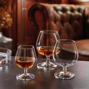 6 Bicchiere Degustation Cognac Arcoroc Calice Vetro Trasparente cl 15 – cl 25 – cl 41